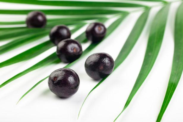 acai berry - Tumori si bolile tumorale * De ce iubim superfructele? [6]