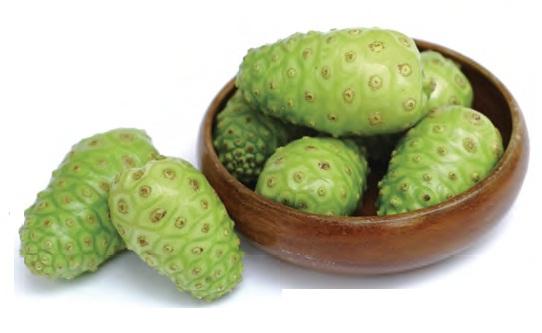 Tumori si bolile tumorale | De ce iubim superfructele? noni-organic-calivita