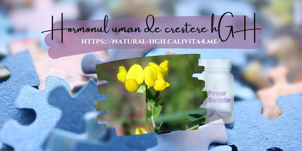 Schinduf Trigonella foenum graecum - 14 moduri pentru a stimula natural nivelul de hormoni de creștere