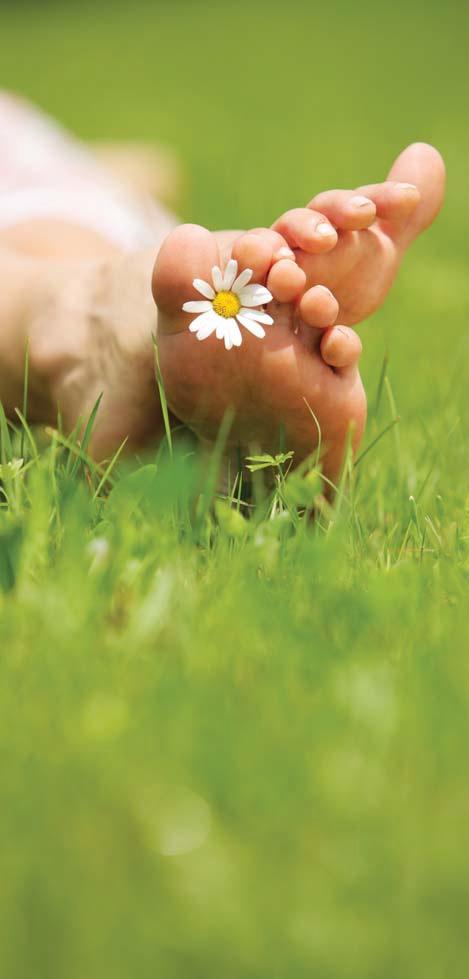 Iti doresti o cura de detoxifiere eficienta si usor de implementat?