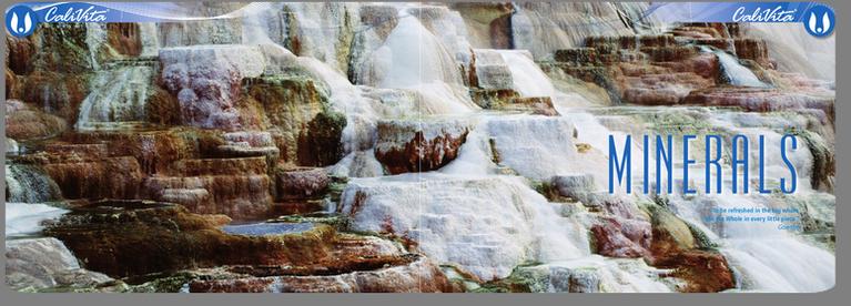11 minerale esentiale Calivita